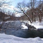 冬の十和田、奥入瀬渓流も風情が有っていいもんです。寒いけど・・・・