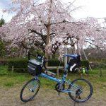 六甲山麓の北山貯水池まで桜を見にポタリング