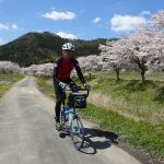 丹波篠山宮田川沿いの桜、誰も居なかったのでBikeFridayに乗って写真撮影をしてきました。