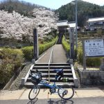 丹波篠山で桜満開の中を走って来ました。
