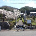 丹波篠山の北東約10kmに位置するひなびたお寺松隣寺は参道に桜が咲き雰囲気が大好きです。