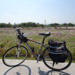 レンタサイクルで台湾自転車旅行、借りた自転車の紹介です
